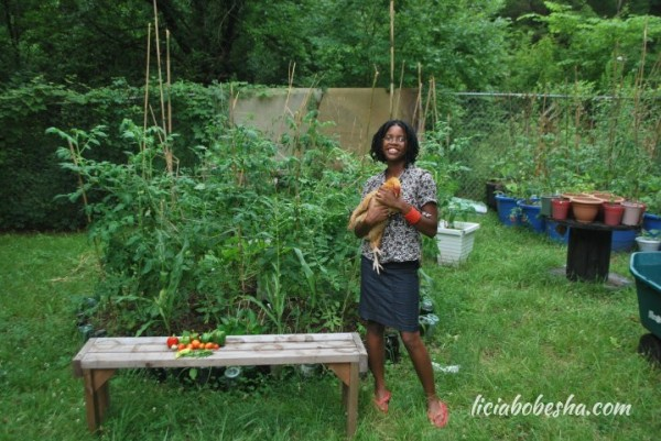 Urban Farming: How and Why I Keep Free Range Chickens in My Backyard